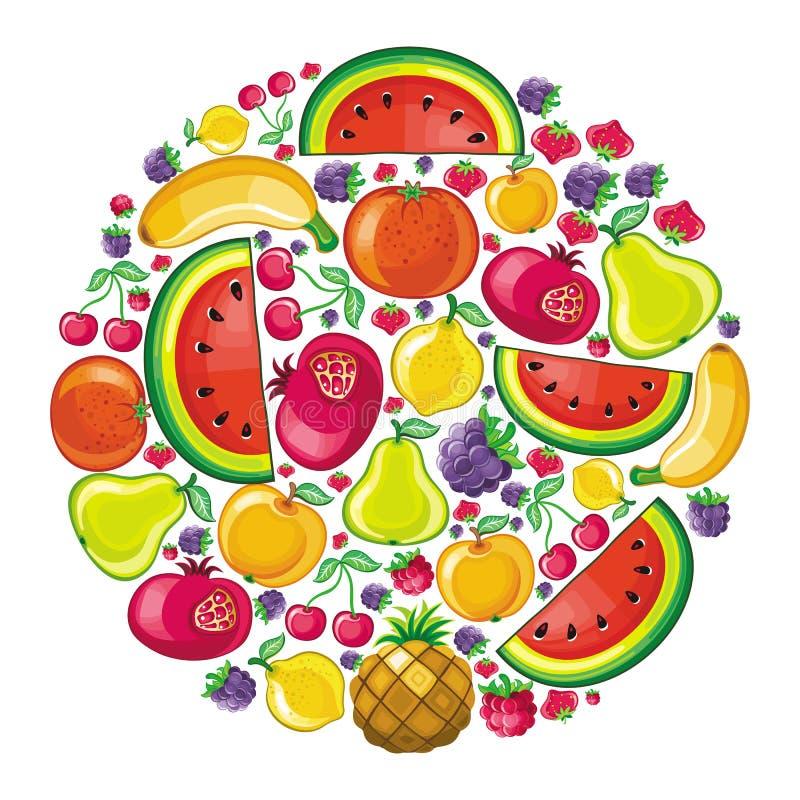 Diversos tipos de frutas deliciosas combinaron en ju libre illustration