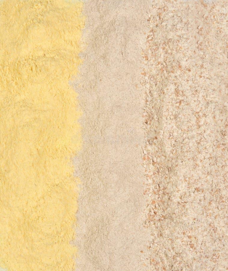 Diversos tipos de harina, de maíz, de alforfón y de trigo integral fotografía de archivo