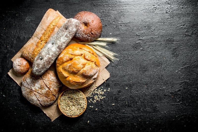 Diversos tipos de pan con el grano y las espiguillas fotografía de archivo