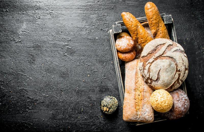 Diversos tipos de pan del trigo y de centeno en la cesta imagen de archivo