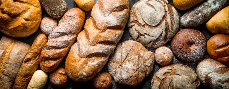 Diversos tipos de pan imagen de archivo