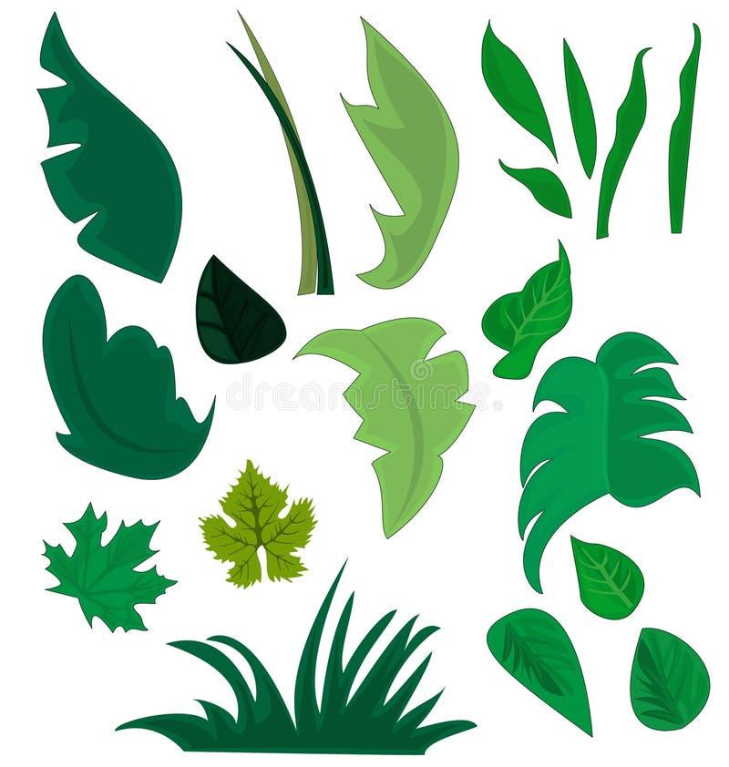 Diversos tipos de plantas y de hierbas ilustración del vector
