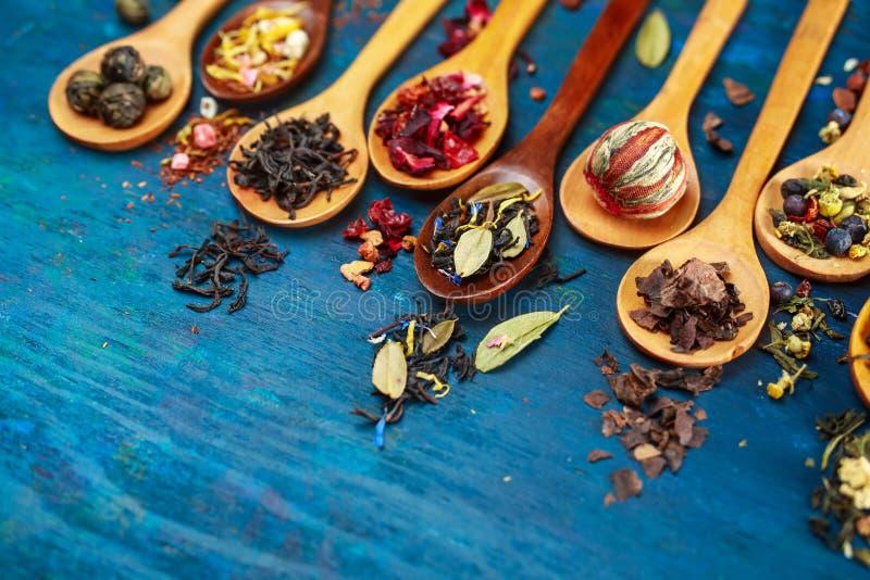 Diversos tipos de té fotografía de archivo