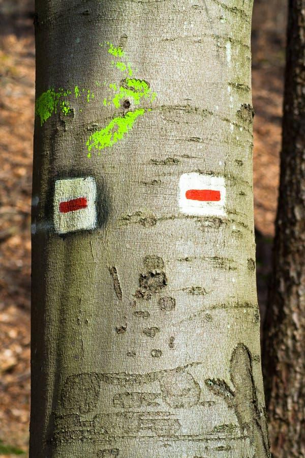 Divertido firma adentro la madera con una cara imagen de archivo