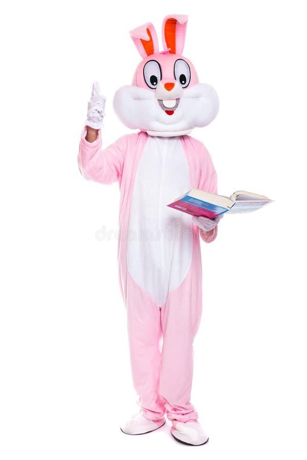 _divertido pascua conejito leer libro, conseguir uno educaci?n, intentar para ser elegante Traje de tama?o natural del conejo con imagenes de archivo