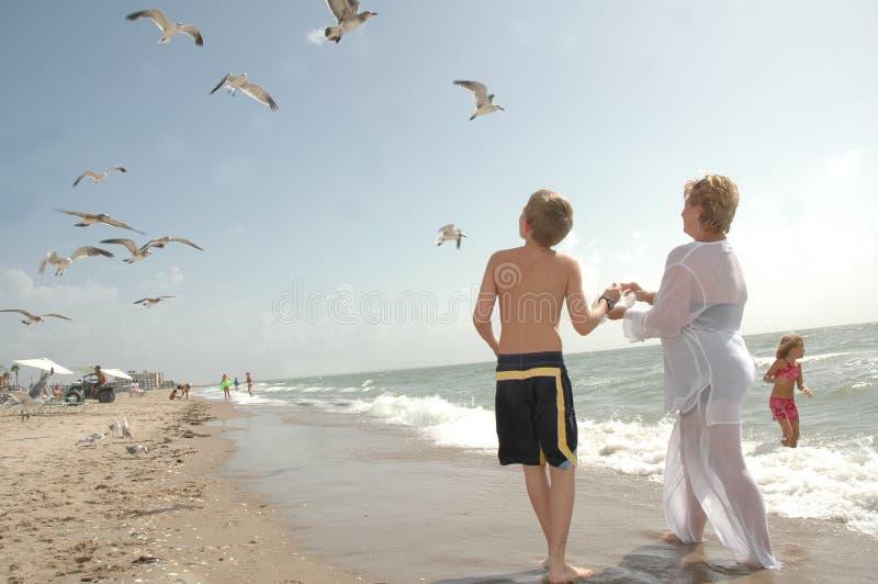 Divertimento da família na praia imagens de stock