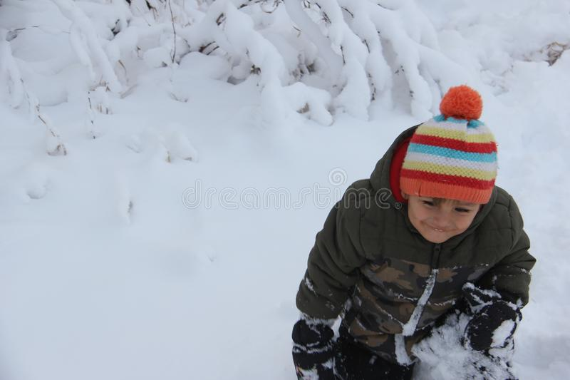 Divertimento da neve do inverno na pradaria, fotos de stock