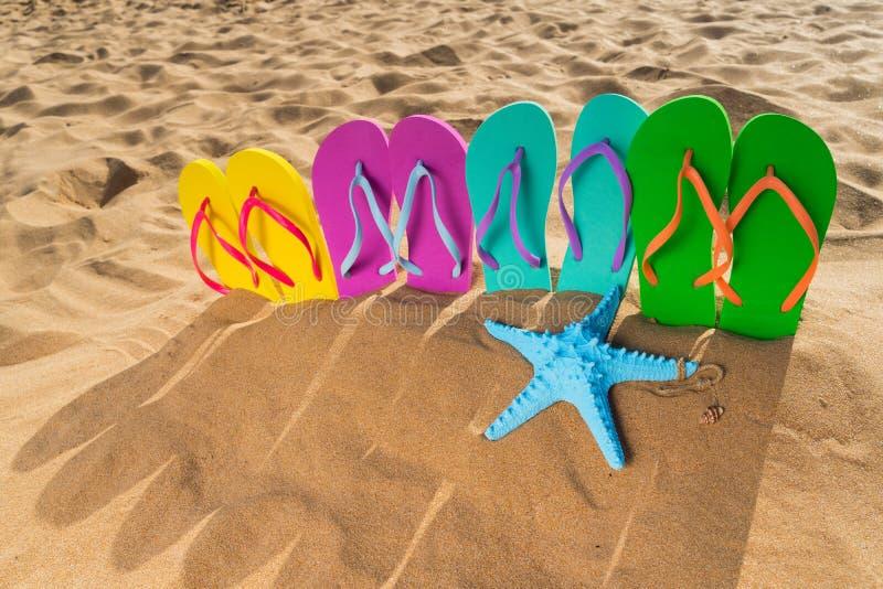 Divertimento da praia do verão fotos de stock royalty free