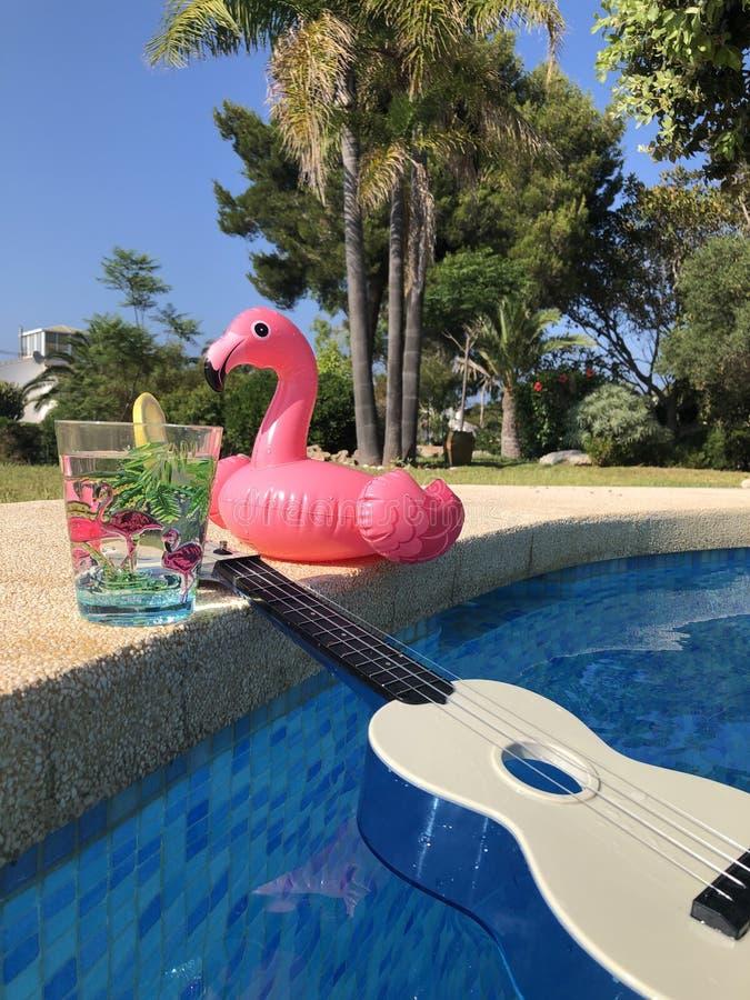 Divertimento di estate al poolside immagini stock