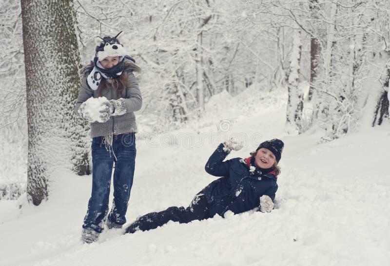 Divertimento di inverno della famiglia immagine stock