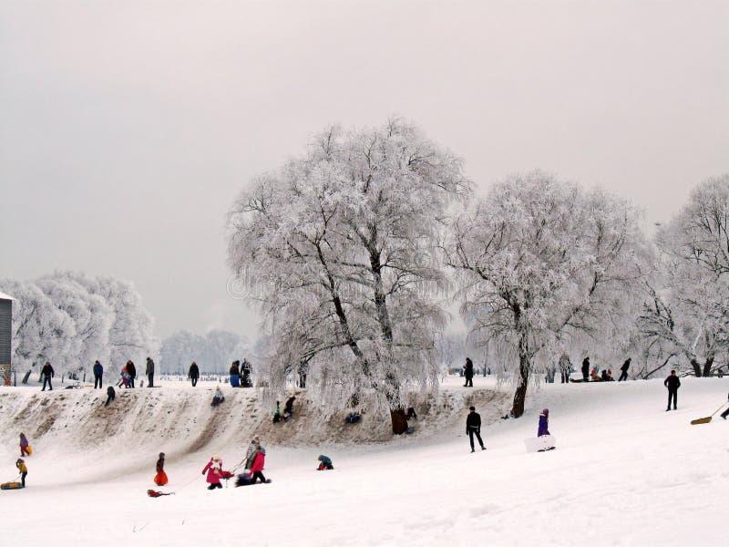 Divertimento di inverno nel parco della città immagine stock libera da diritti