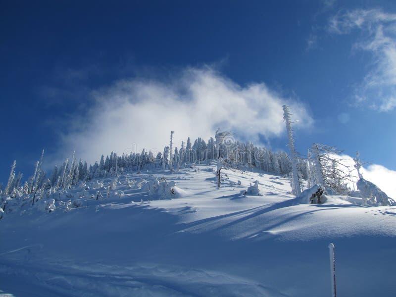 Divertimento do esqui em cumes do francês das montanhas imagens de stock