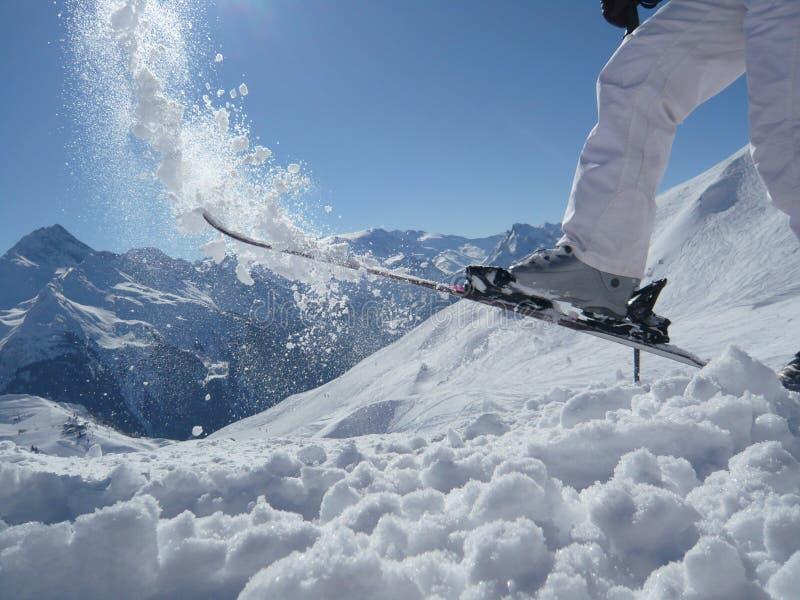 Divertimento do esqui em uma parte superior da montanha