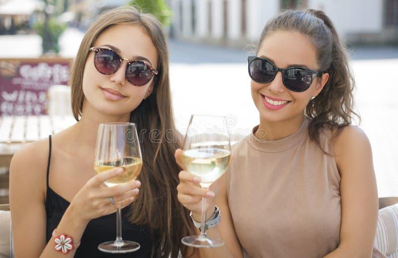 Divertimento do vinho do verão foto de stock