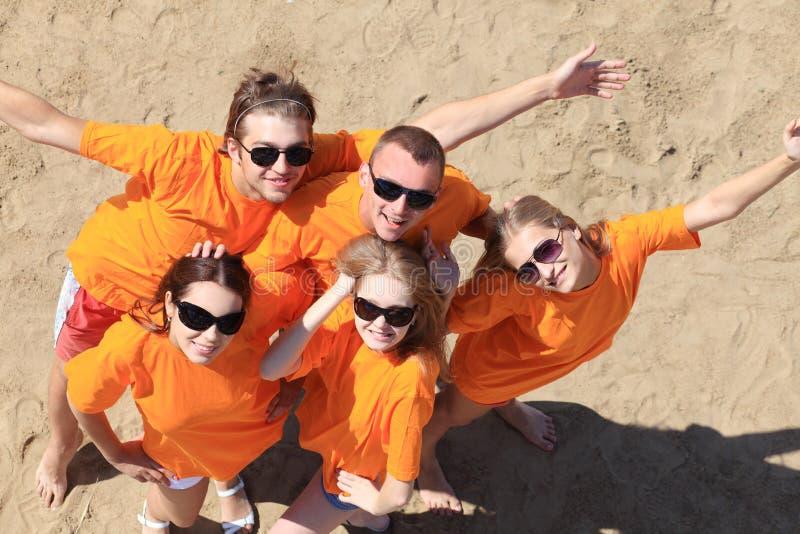 Download Divertimento em uma praia foto de stock. Imagem de guys - 10052362