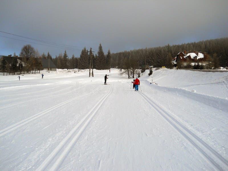 Divertimento nella neve fotografia stock