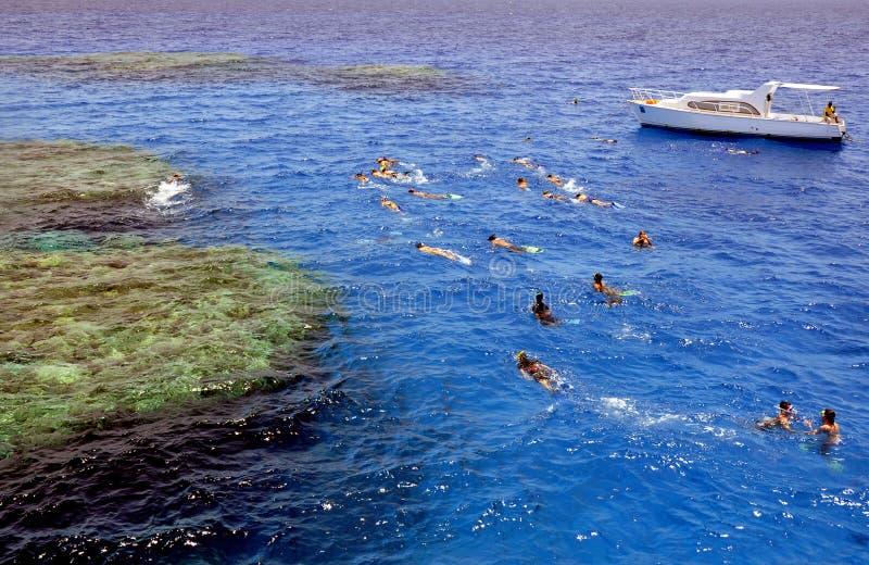 Divertimento no Mar Vermelho foto de stock