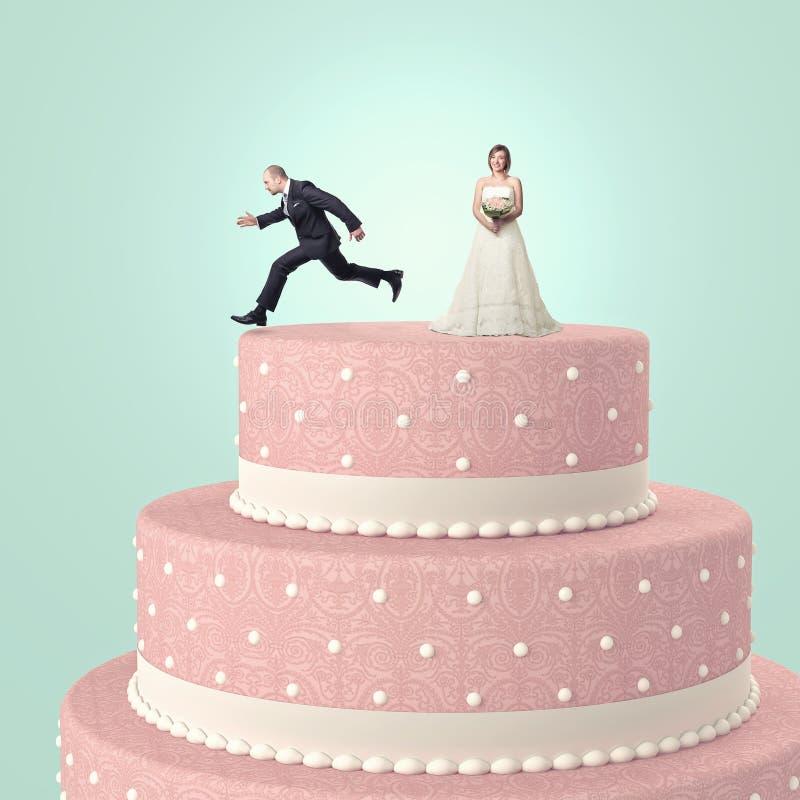 Divertimento a nozze immagine stock libera da diritti