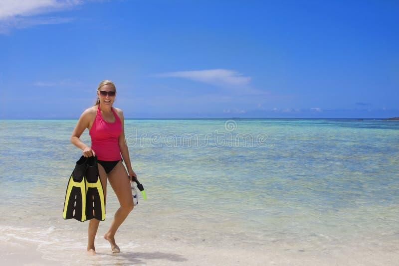 Divertimento Snorkeling no Sun fotografia de stock royalty free