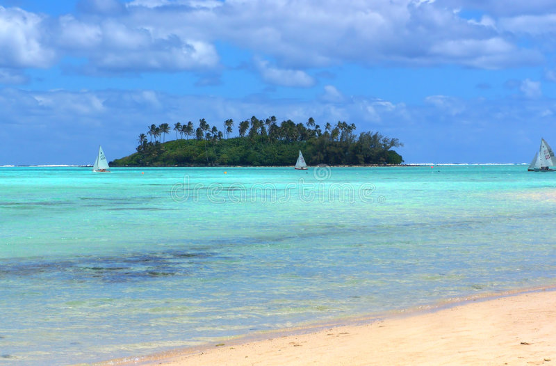 Divertimento tropicale fotografia stock