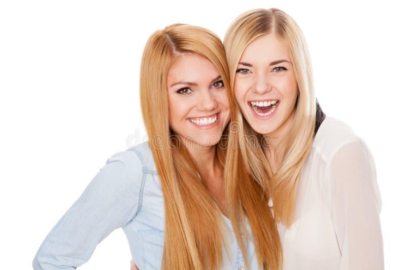 Divertiresi femminile di due amici immagini stock