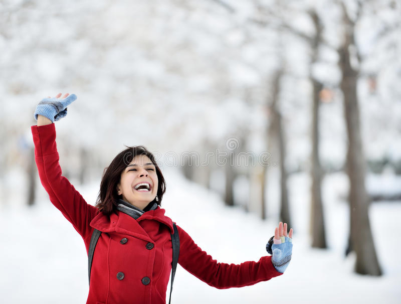 Divertirse en escena del invierno fotos de archivo