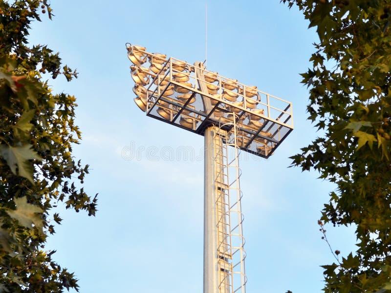 Diviértase el palo de la iluminación con los reflectores potentes entre los árboles imágenes de archivo libres de regalías