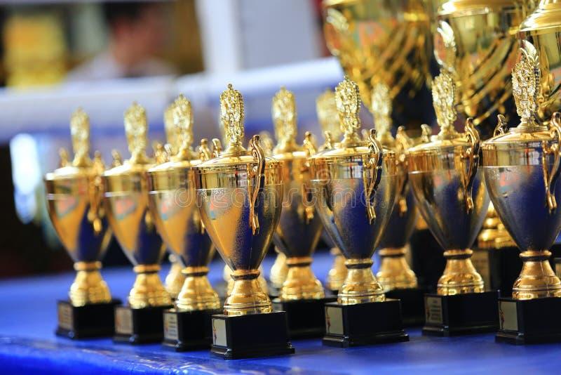 Diviértase la taza del trofeo del oro de la pila en el anillo fotografía de archivo