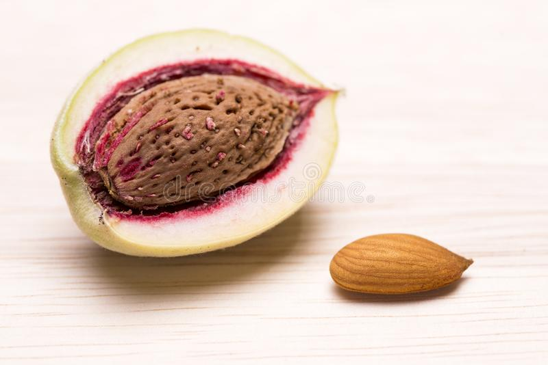Almond fruit with seed. Divided almond fruit in hard shell beside kernel on a wooden table stock image