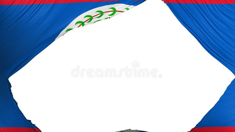 Divided Belize flag. White background, 3d rendering stock illustration