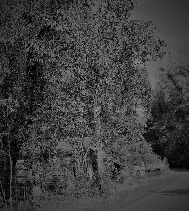 Dividido no lado da estrada fotografia de stock