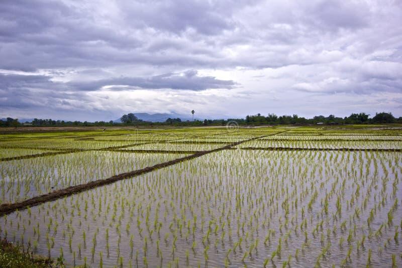Divieto Huai Nam Dip fotografie stock libere da diritti
