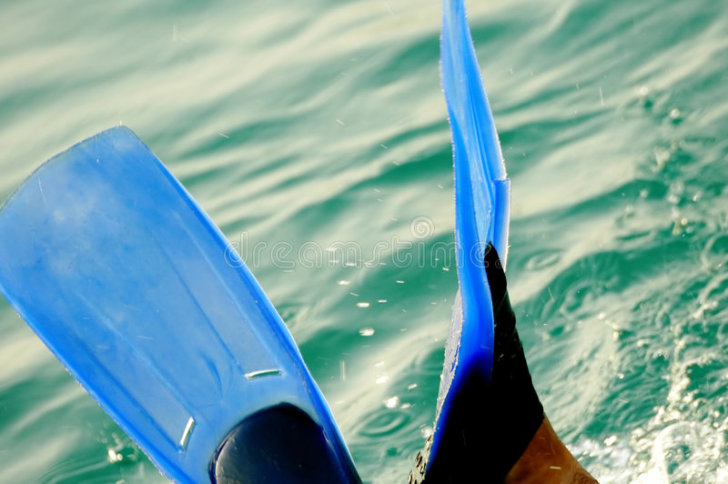 Download Diving in stock photo. Image of flippers, holiday, leisure - 235840