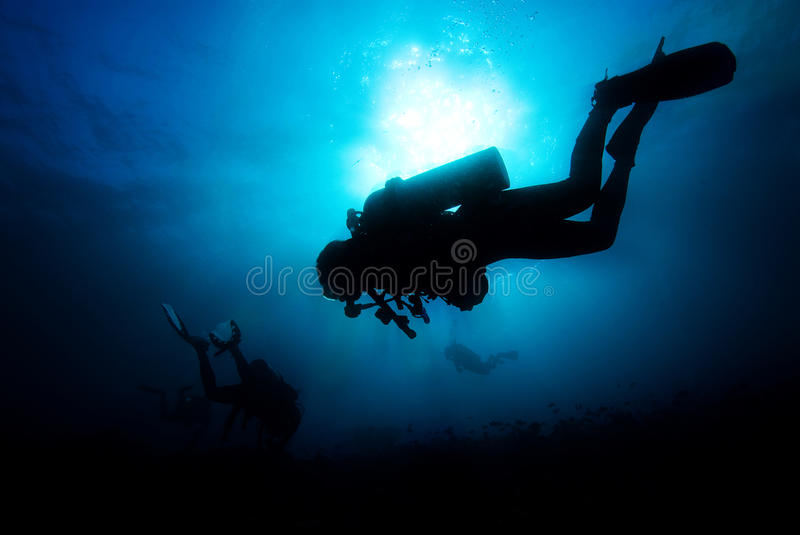 Diving in the blue stock photo