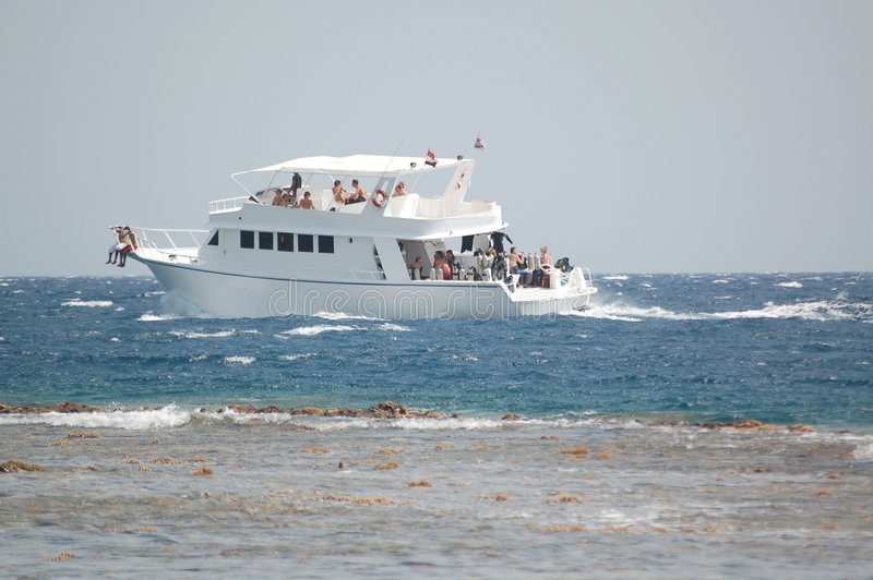 Download Diving boat stock image. Image of graceful, cayman, life - 2691811