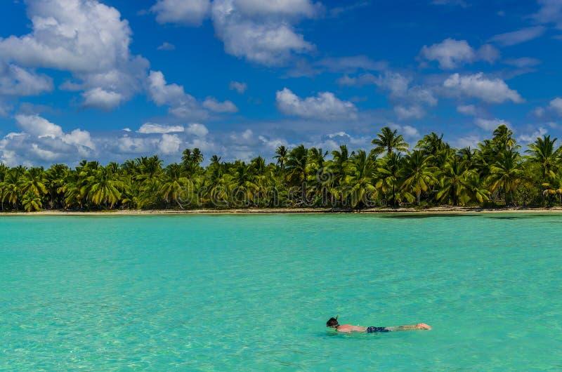 Diving, dive, coast of the Caribbean Islands stock photos