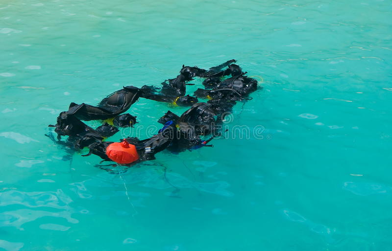 Download Diving equipment stock image. Image of life, diving, aqueous - 20644937