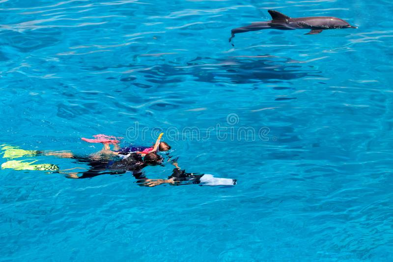 Diving people underwater in sea with corals and fish around, scuba diver open waters beginner course with professional instructor. And young kid first time stock image