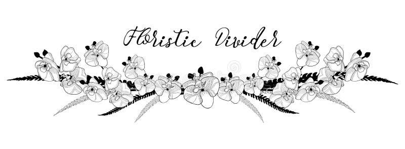 Divisor floral delicado del texto Elemento del diseño floral de la orquídea ilustración del vector