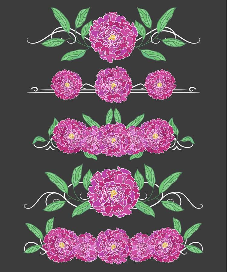 Divisores del texto del vector con las hojas de la peonía y la peonía verdes de la lila stock de ilustración
