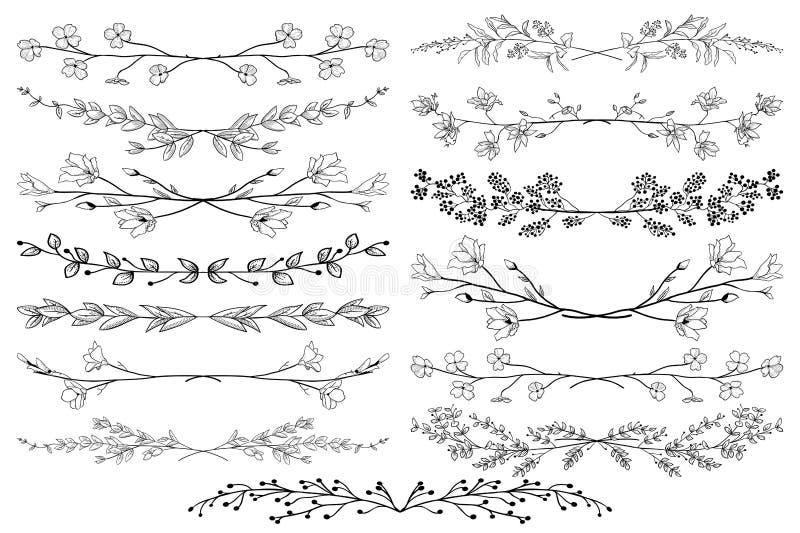 Divisori neri di vettore con i rami, le piante ed i fiori royalty illustrazione gratis