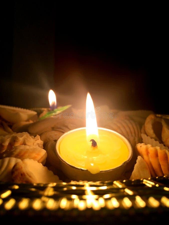 Diwali diyas i candel bildar, ordnat beautifully på havsskal och den guld- plattan royaltyfri fotografi