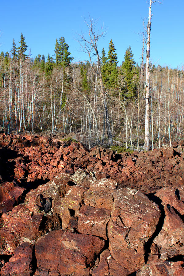 Dixie National Forest Lava Field royalty free stock images