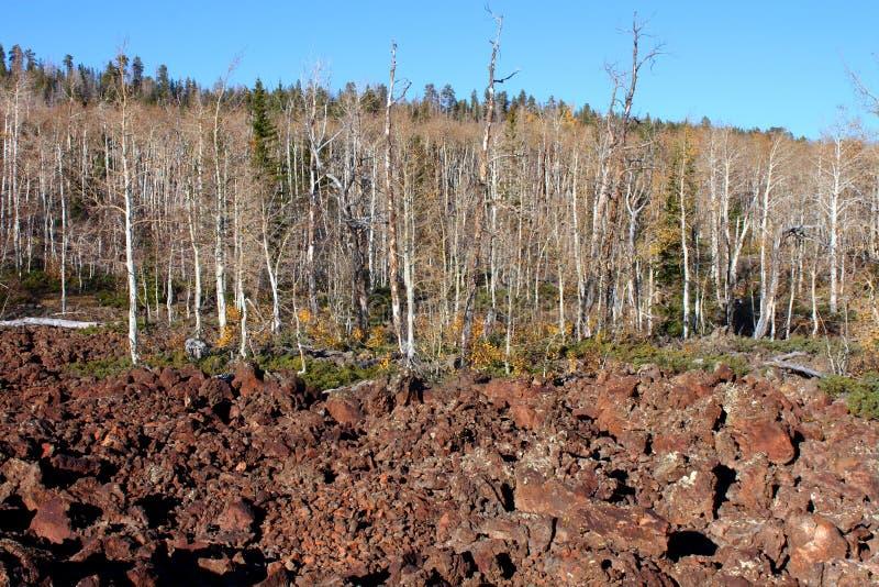 Dixie National Forest Lava Field stock afbeeldingen
