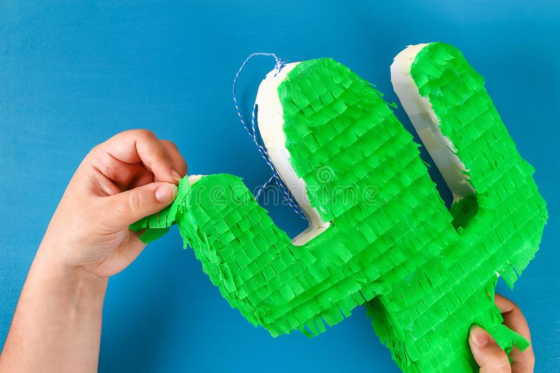 Diy cinco de mayo Mexican Pinata Cactus made cardboard, crepe paper your own hands blue background. Diy cinco de mayo Mexican Pinata Cactus made cardboard and stock photo