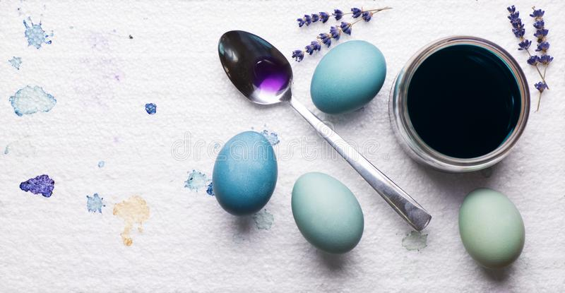 DIY dyed using red cabbage various shades of blue easter eggs drying on piece of polystyrene. DIY Happy Easter. stock photography