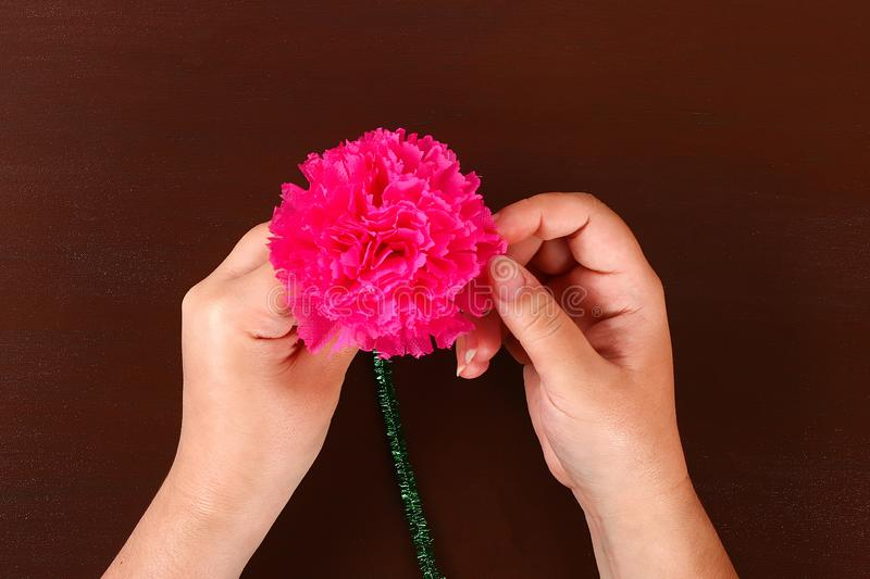 Diy May 9th carnations from crepe paper, wire and napkins. Gift idea, decor 9 May. 11 Diy May 9th carnations from crepe paper, wire and napkins. Gift idea, decor stock photos