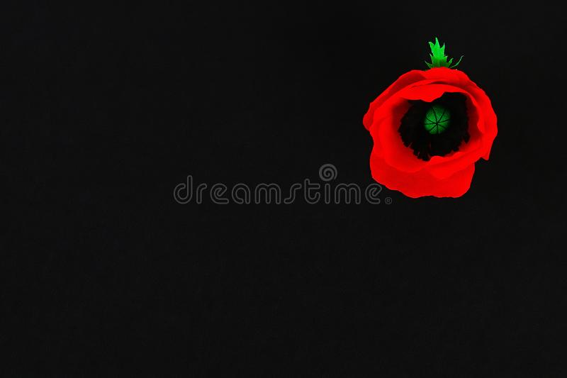 Diy paper red poppy Anzac Day, Remembrance, Remember, Memorial day crepe paper on black background. Diy paper red poppy Anzac Day, Remembrance, Remember stock photos