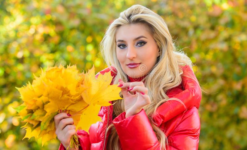 DIY project autumn leaf bouquet. Woman gather leaves in park. Autumn is her favorite season of year. Lady gathering stock image