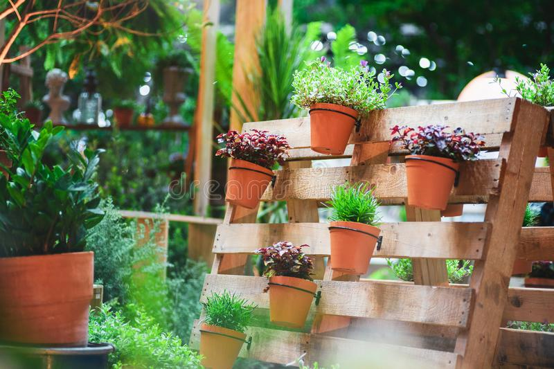 DIY recycled wooden pallet for flower pots. Storage industrial pallet used in gardening for a wall decoration as a shelf for. Flowerpots. Garden with planters royalty free stock photography